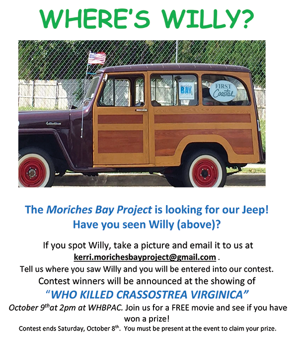 Have You Seen Willy?