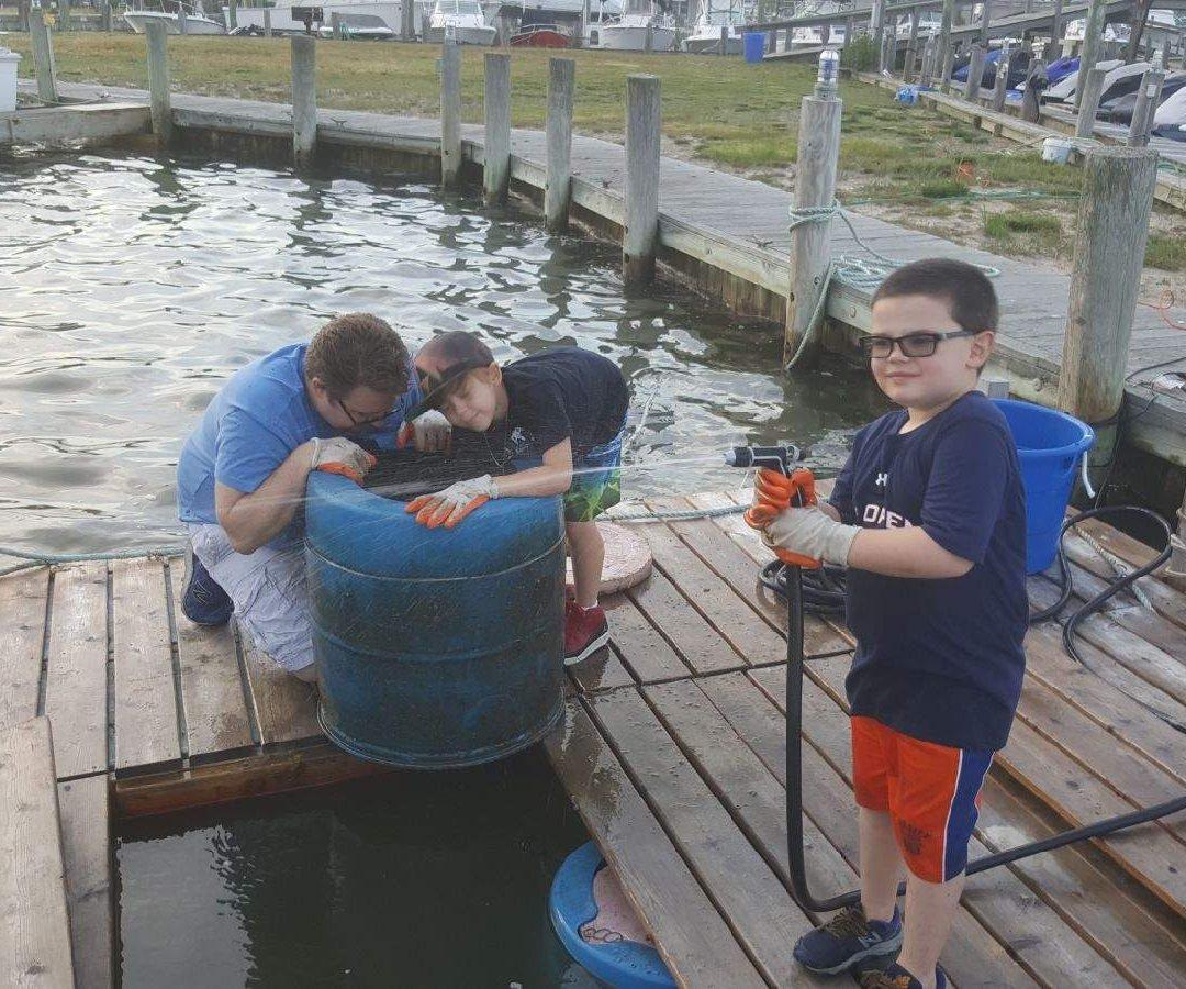Boy Scouts Maintaining FLUPSY at Windswept Marina