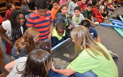 Moriches Bay Project Goes to Moriches Elementary School