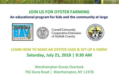 Join Us for Oyster Farming on July 21st